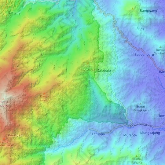 Palopo topographic map, relief map, elevations map